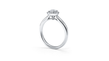婚約指輪 フォーマルハウト2