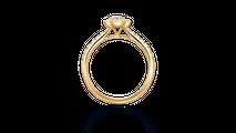 婚約指輪 フォーマルハウト Ete3