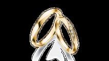 結婚指輪 フォルトゥーナ3