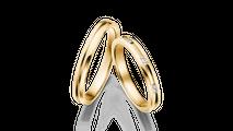 結婚指輪 サーガ3