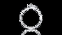 婚約指輪 アンドロメダ2