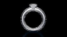婚約指輪 ポルックス2